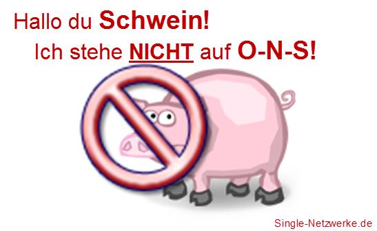 Ich steh nicht auf O-N-S (One Night Stands). Wenn Männer zu Schweinen werden!