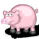 Der Mann das Schwein - Männer, die Schweine in Singlebörsen. Wenn Männer in Singlebörsen in Nachrichten nur auf O-N-S (One Night Stands) aus sind.