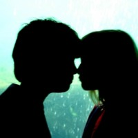 kostenlose singleborsen Beckum